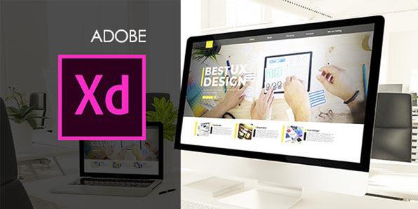 Essential Adobe Web Design Bundle
