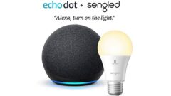 Echo Dot + smart bulb combo available for $28.99 this Black Friday 2020