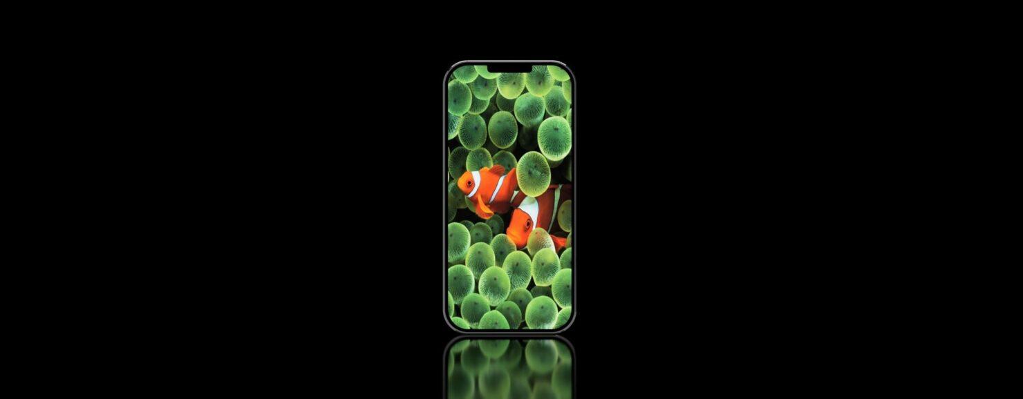 iphone-13-anniversary-edition-1