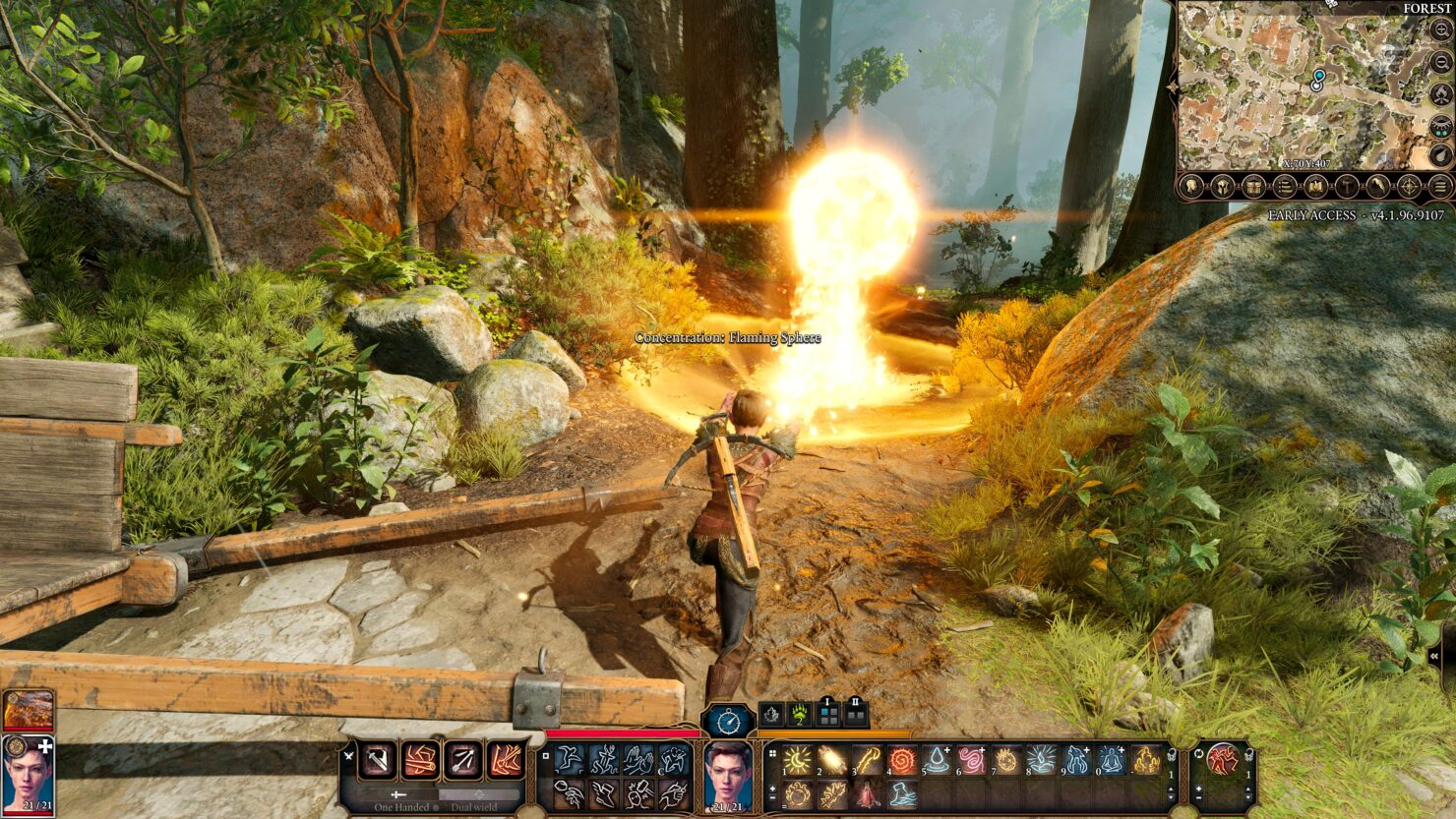 bg3-druid_screenshots02