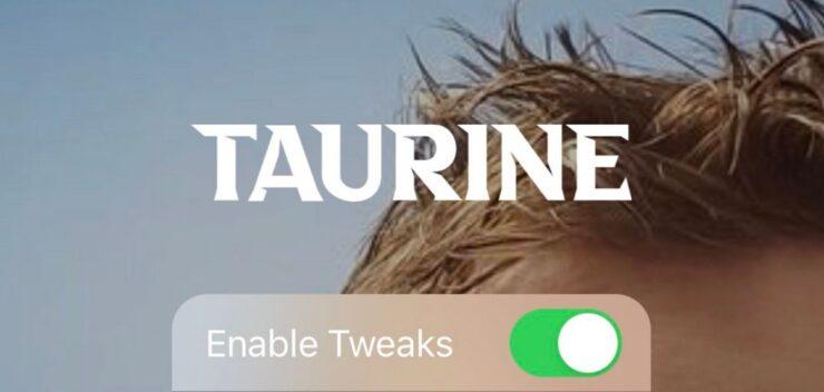 Taurine Jailbreak Tool for iOS 14