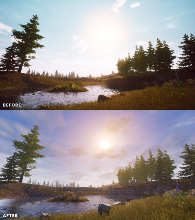 ce_-_before_and_after_-_3