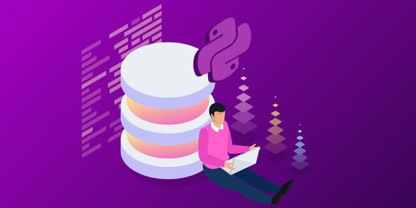 Learn Python & Django Developer Bundle