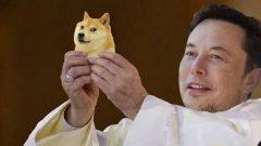 dogecoin-elon-musk-snl-memes