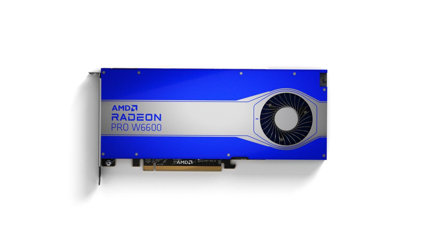 amd-radeon-pro-w6600-graphics-card-_2