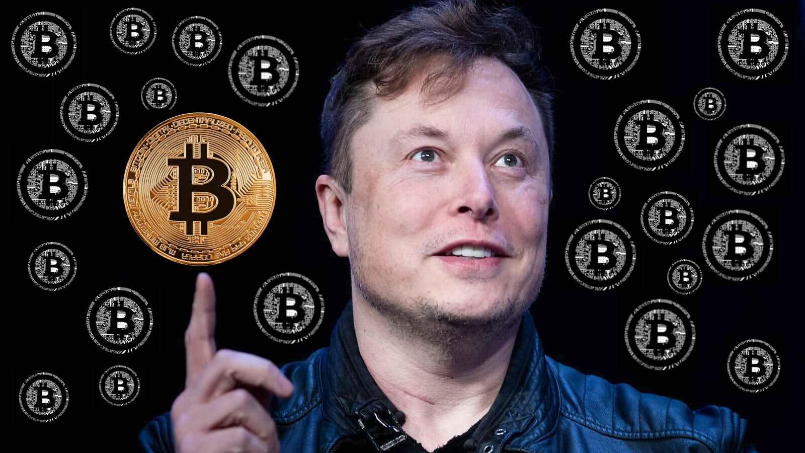 bitcoin potere