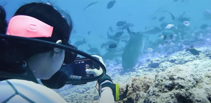 A Galaxy S21 Ultra Was Used to Shoot This Underwater National Geographic Video