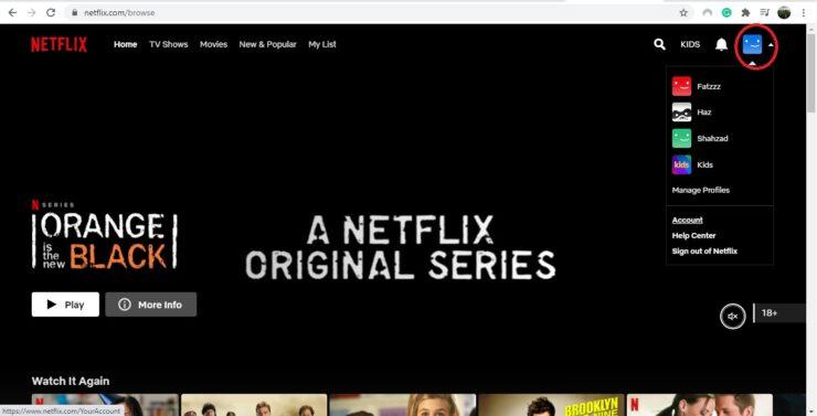 PIN Lock on Netflix Profile