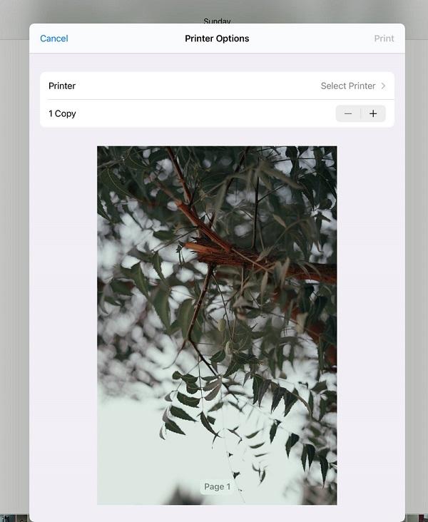 iOS 15 AirPrint