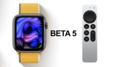 beta-5-watchos-8-tvos-15
