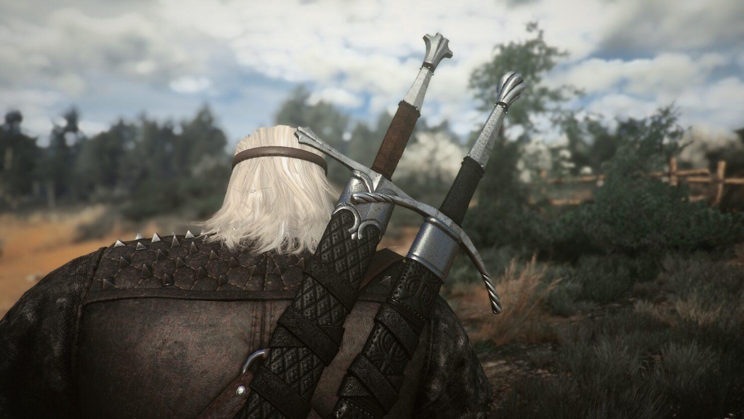 witcher 3 armor mod