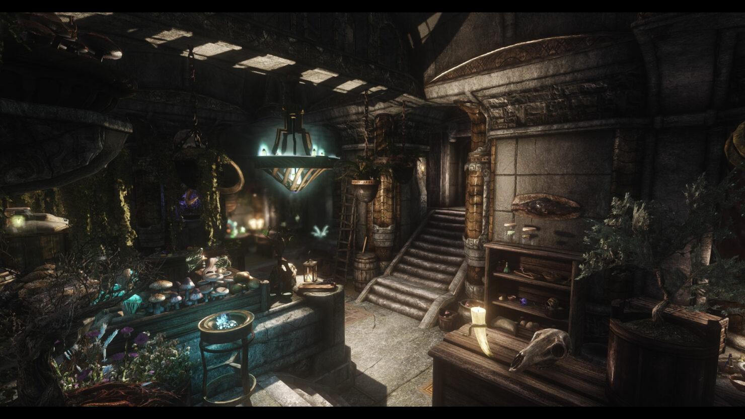 New The Elder Scrolls V Skyrim Shop Overhaul Mod