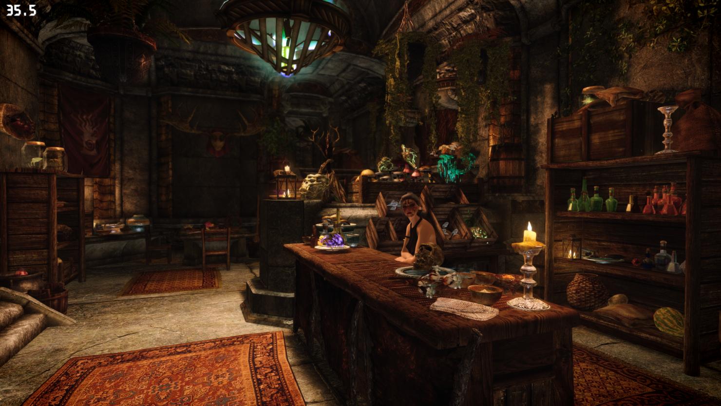 new-the-elder-scrolls-v-skyrim-shop-overhaul-mod-9