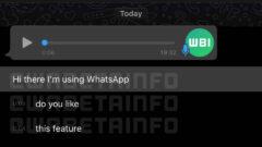 wa_transcript_voice_message_ios-960x719