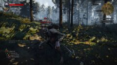 thewitcher3_1sthd